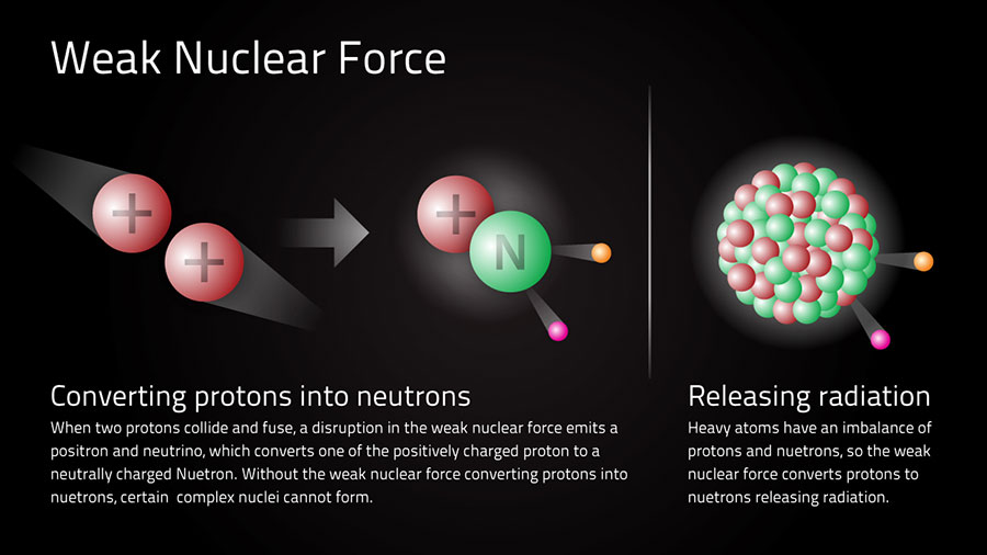Weak-Nuclear-Force2