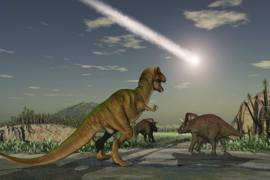 It is believed that 66 million years ago, a massive asteroid smashed near to the Yucatan Peninsula of Mexico. Photo credit: iStockphoto / The Daily Beast