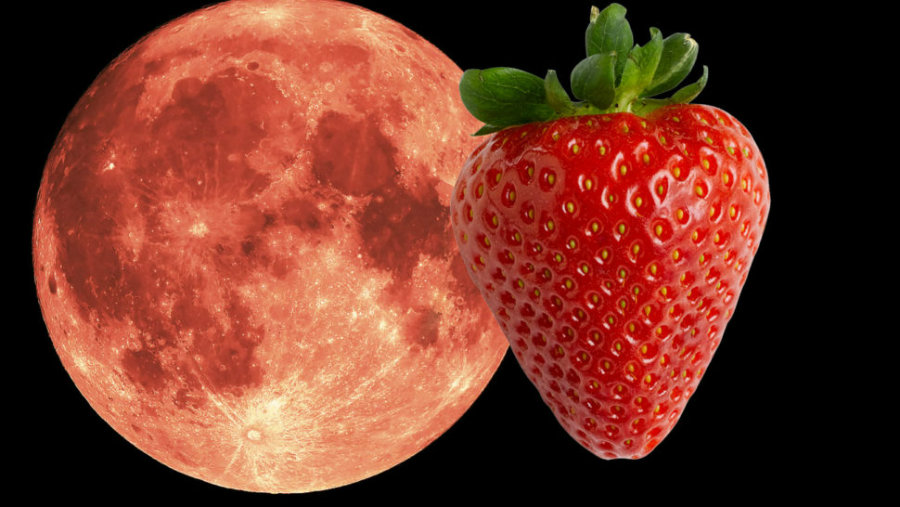 The Strawberry Moon, a Smaller and Less Bright Full Moon