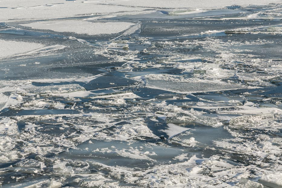Seas are warming faster than ever due to melting polar ice sheets. Photo: Ice sheets and snow melting on Lake Ontario