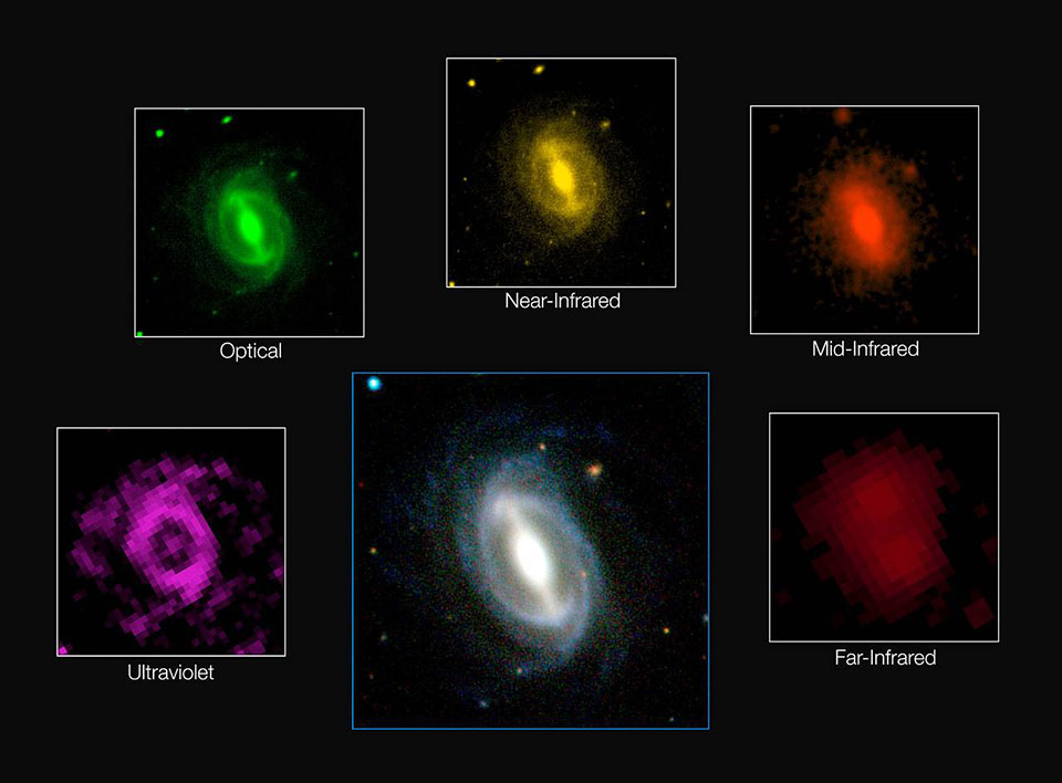 This composite image shows how a single galaxy appears in different wavelengths of radiation. ICRAR / GAMA / ESO