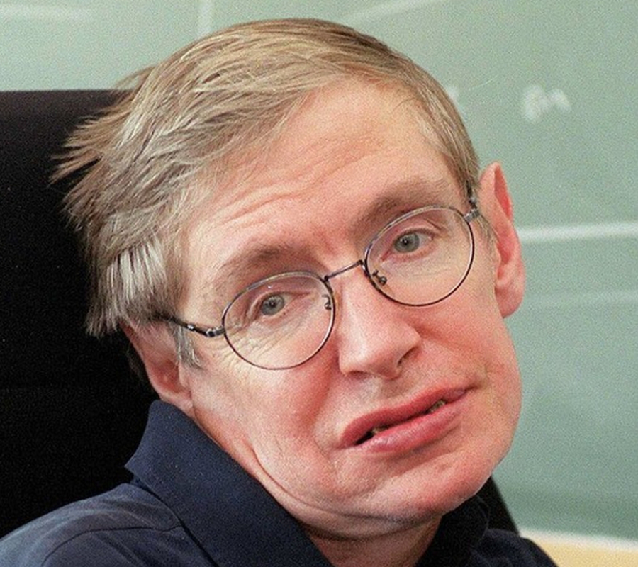 Hawking Brexit