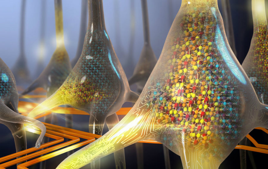 Creating functional neurons artificially is not only a breakthrough itself, but a stepping stone for other innovations in the field of biotechnology. Image Credit: Ars Technica