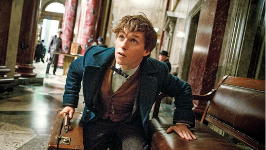 """Even though the Harry Potter prequel, """"Fantastic Beasts and Where to Find Them"""" has not been released yet, its sequel has already been scheduled. Photo credit: Today Online"""