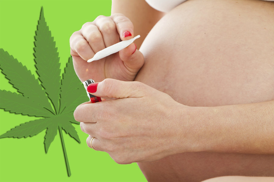 The current research was focused on whether marijuana usage in pregnant women could mean a preterm birth, low baby weight or have harmful outcomes during birth and at first. Photo credit: Sickchirpse.com
