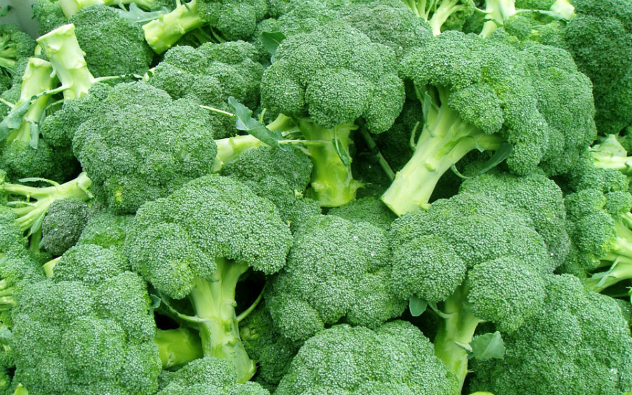 Broccoli is the first contestant for containing the highest levels of NMN. Photo credit: Wallpapersdsc.net