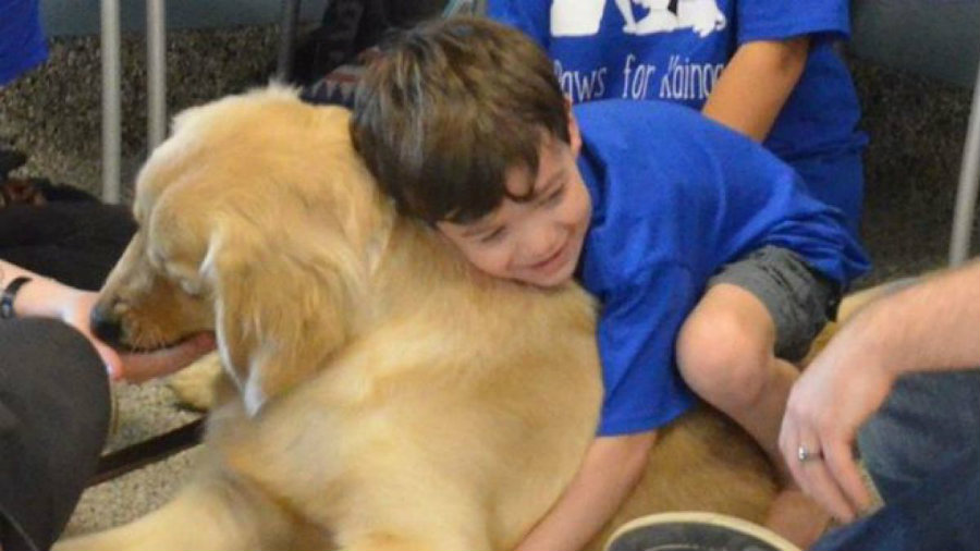 Kainoa's mom, Shannon, shared a photo of her son resting his head on Tornado. Photo credit: Facebook / 4 Paws For Ability / T13