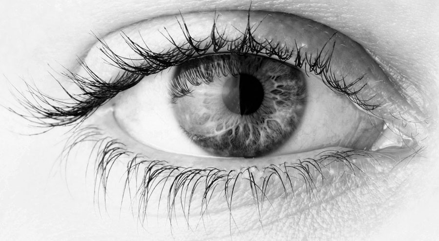 Diabetic retinopathy poses a threat to the working-age population of most developed countries. Photo credit: Coprevent.org