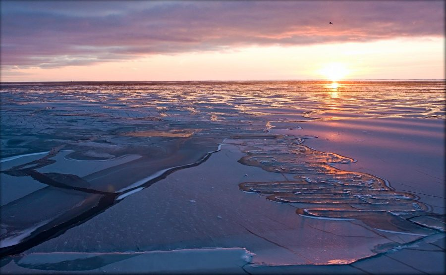 "Obama orders the creation of a ""resilience area"" to protect Alaskan waters. Photo credit: US Climate Resilience Toolkit"
