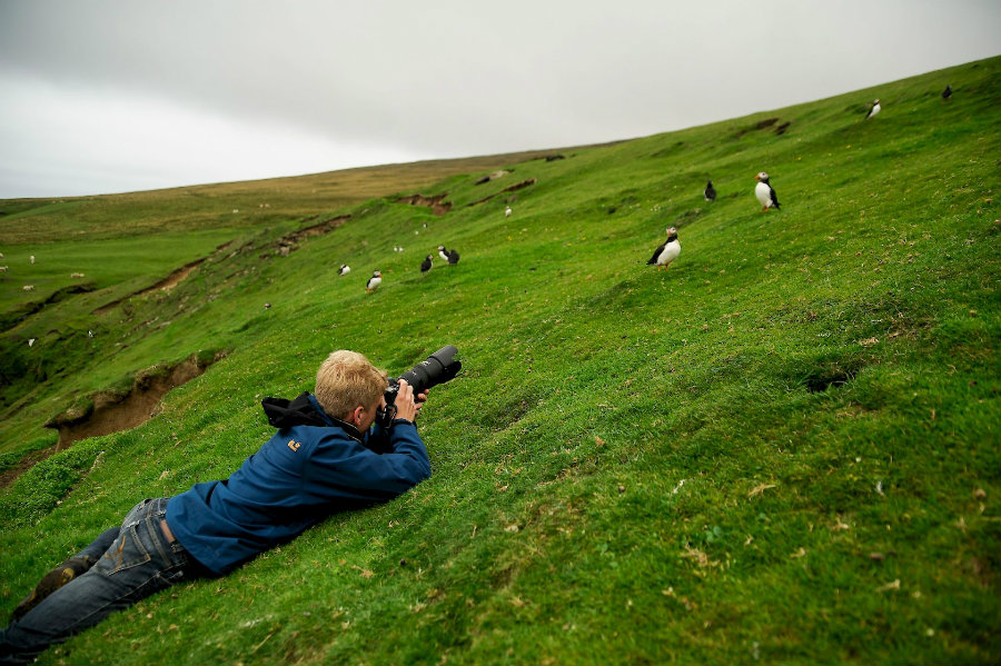 The bird counting is not an exclusive event of the National Audubon Society. Photo credit: Shetland