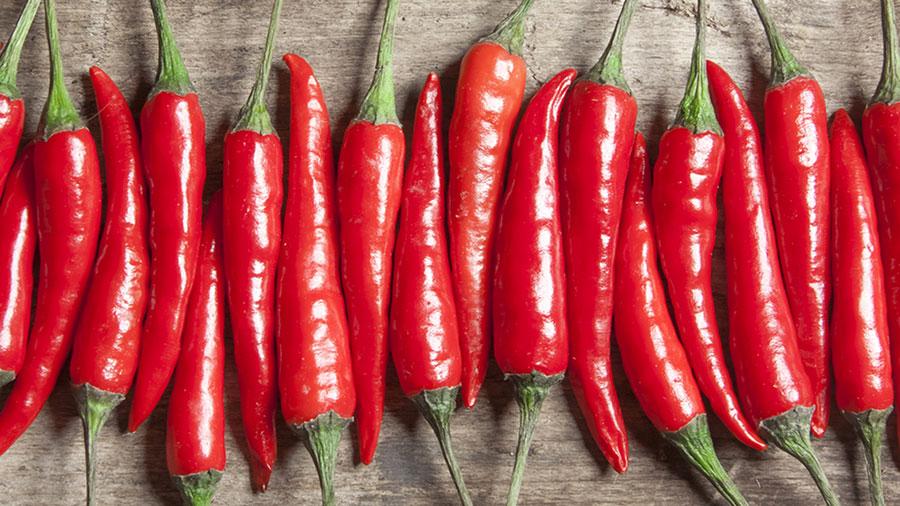 chili-pepers-mortality
