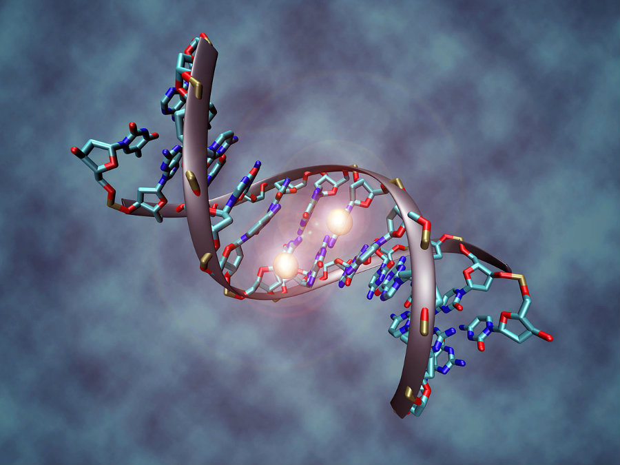 The key behind how CancerLocator works is that it focuses on DNA methylation. Image credit: Christoph Bock, Max Planck Institute for Informatics / Wikipedia