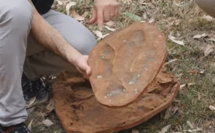 The variety of the samples found at the Walmadany region was even more impressive than the discovery of the biggest dinosaur footprint. Image credit: Euronews (in English) Youtube Channel