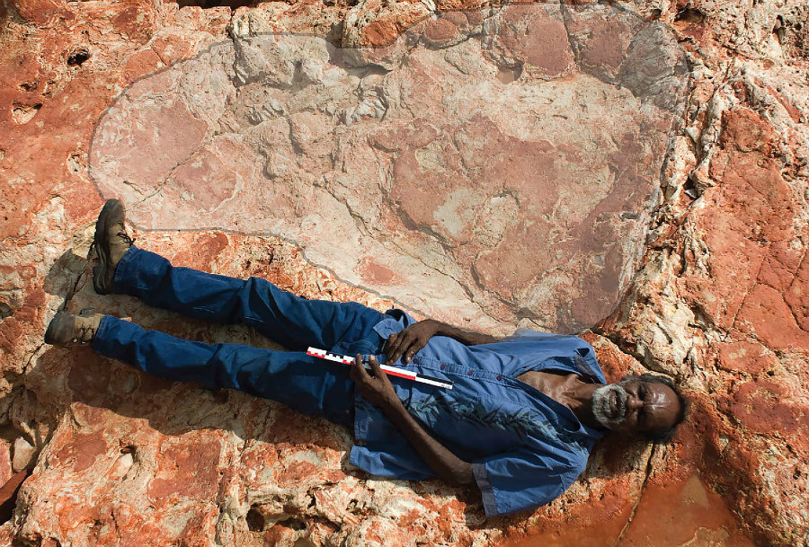 One of the most remarkable findings has to do with the discovery of the world's biggest dinosaur footprint ever found. Image credit: Inhabitat