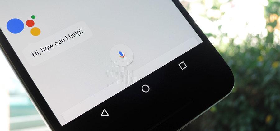 google-assistant-trends
