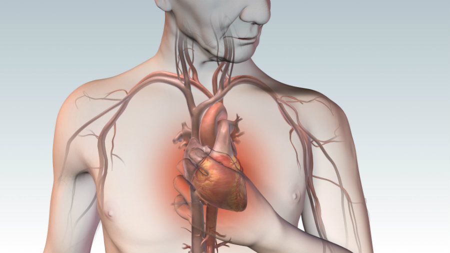 Секс и болезни сердца
