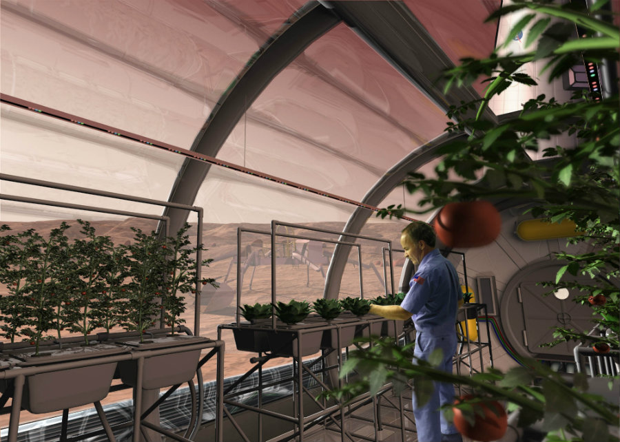 The Prototype Lunar Greenhouse (LGH) is hoped to help fulfill the late Ralph Steckler's dream of space colonization. Image credit: NASA
