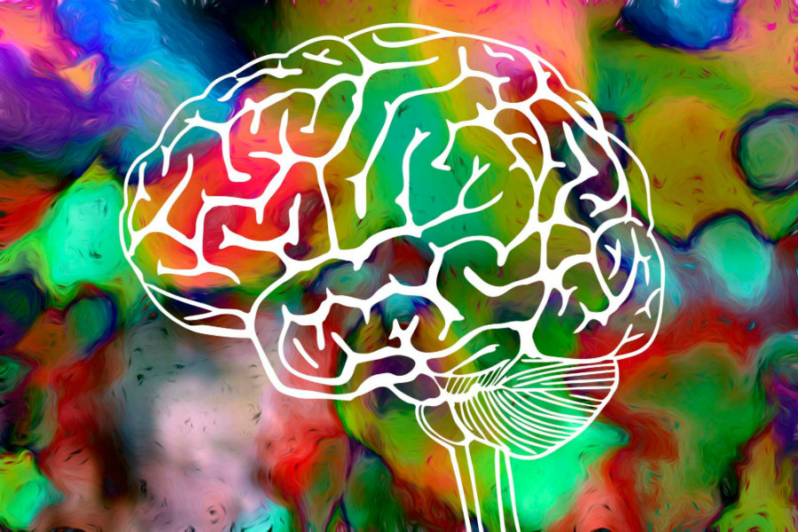 Under the influence of psychedelic drugs, the brain experiences a much higher degree of neural signal diversity. Image credit: The Daily Beast