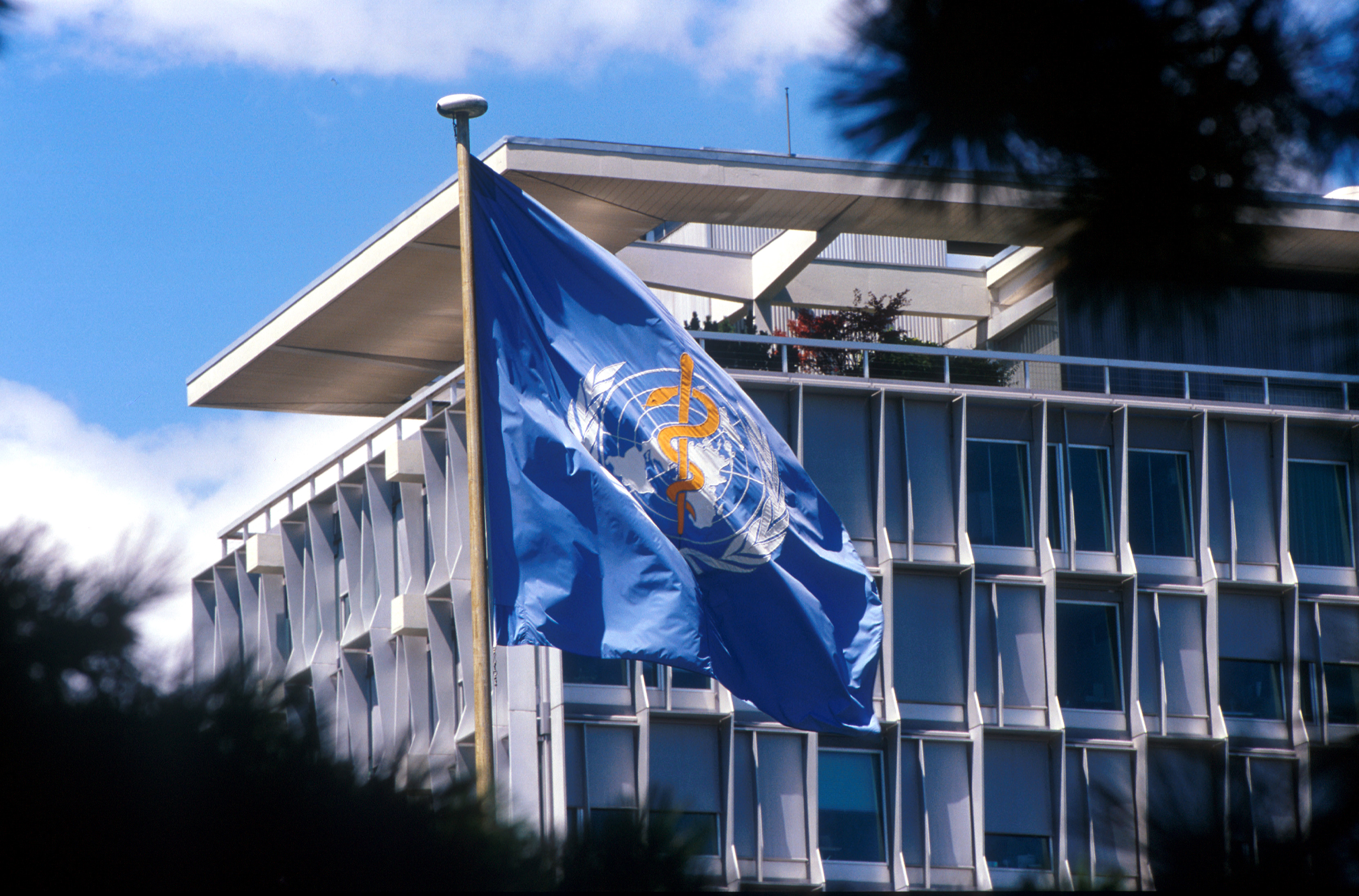 A view of the World Health Organization headquarters