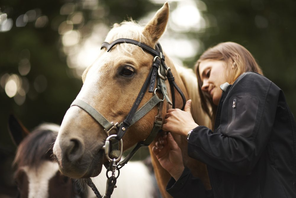 Woman-caring-for-horse-Thin