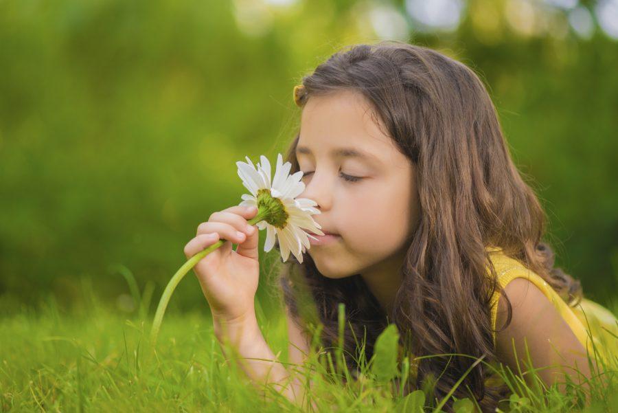 Little girl smelling a white gerber