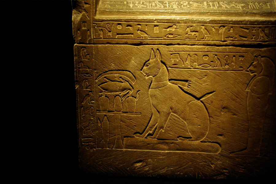 Image credit: Madam Rafaèle / Garstangmuseum.wordpress.com