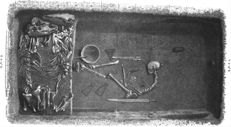 Forbes: Illustration by Evald Hansen based on the original plan of grave Bj 581 by excavator Hjalmar Stolpe (1889). Image credit: American Journal of Physical Anthropology, CC BY 4.0 / Forbes