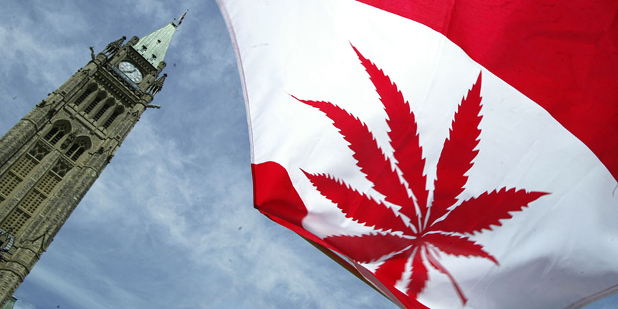 Canada spent more on marijuana than wine, Canada's bureau of statistics, Canada legalizing marijuana, Canada, Weed