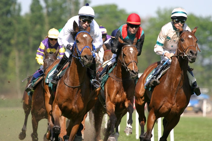 Horse Racing in Motion